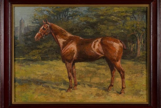 Portrait of a Horse in Pasture