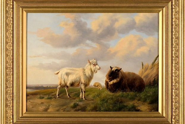 Billy Goat & Sheep on Panel