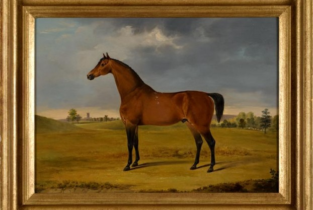 Horse Oil Painting By Gwynn
